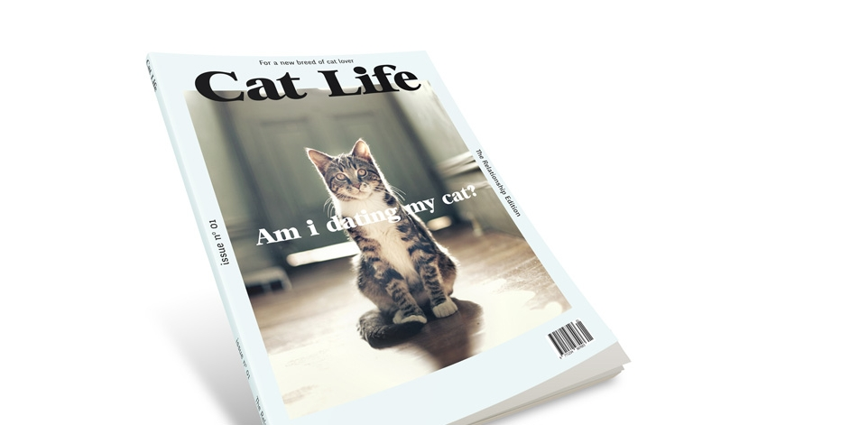 """Cat Life"" Pitch"